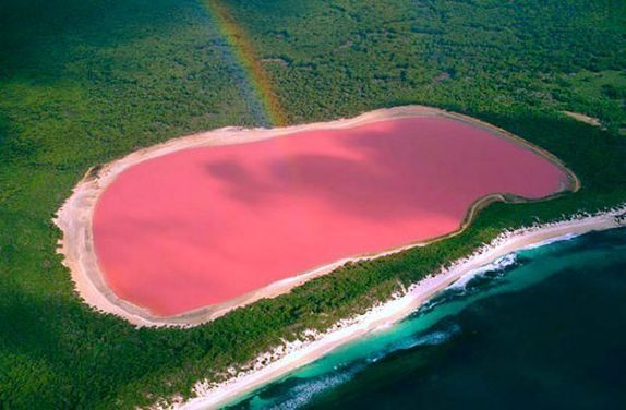 Why The Lake Is Pink