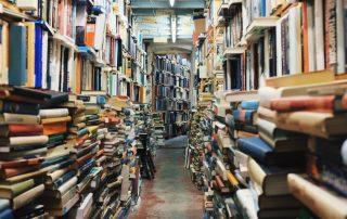 Overstuffed bookstore